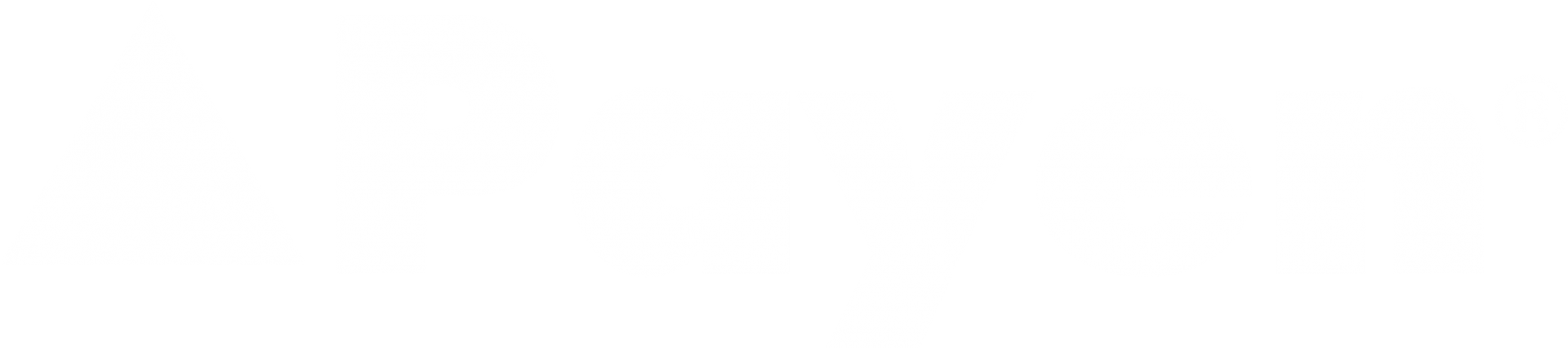 payen-logo-transparent